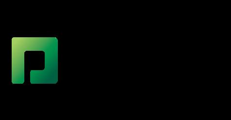 ペイコムソフトウェアのロゴ
